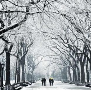 पूर्वोत्तर अमेरिका बर्फ की सर्द चादर से ढका